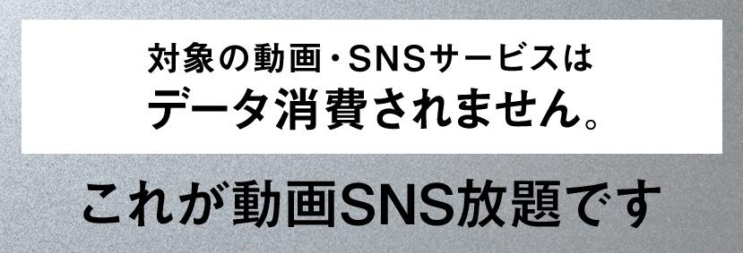 動画SNS放題